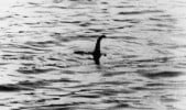Is that Nessie?
