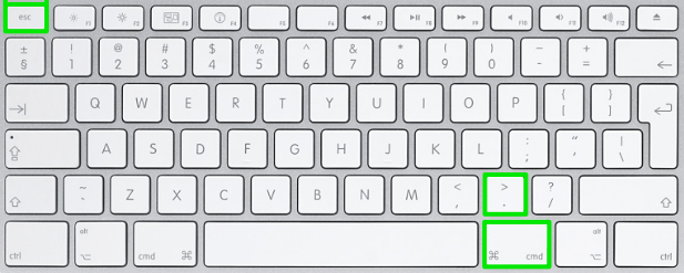 Screenshot keyboard shortcut 10