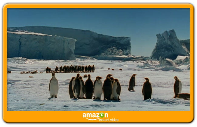 March of the Penguins Amazon