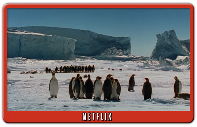 March of the Penguins Netflix