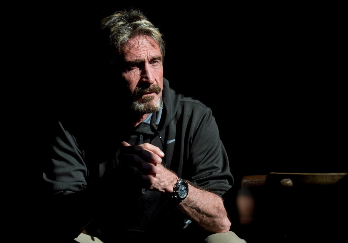 john mcafee art cyber warfare
