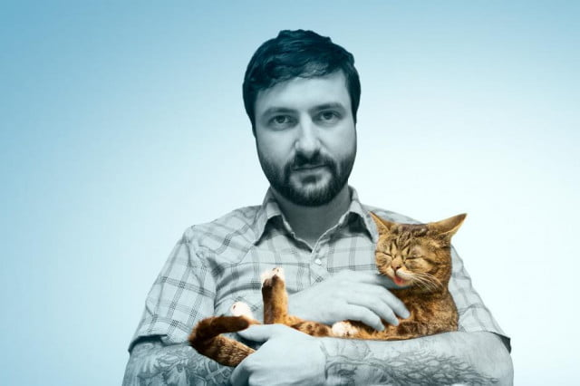 cat daddies the big business of internet animals mike bridavsky lil bub