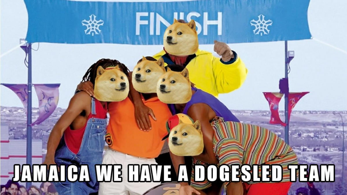 dogecoin jamaican bobsled team olympics msenuxk