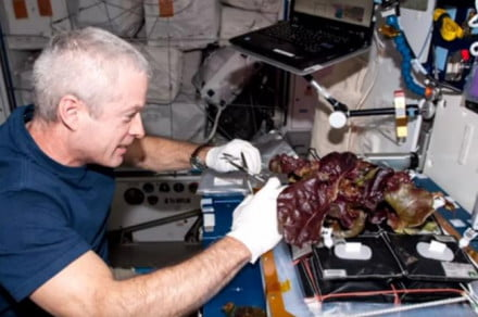 nasa iss meal