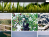 Yahoo enlivens Flickr with a Pinterest-esque redesign and 1TB of space