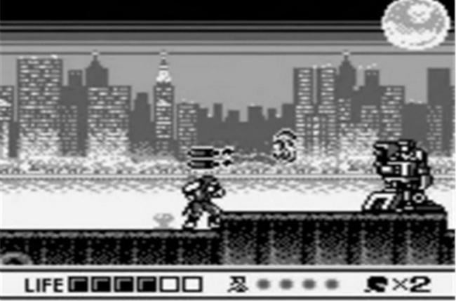 Ninja Gaiden Shadow