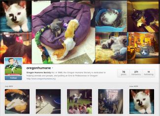 oregon humane instagram