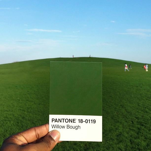 pantone project willow