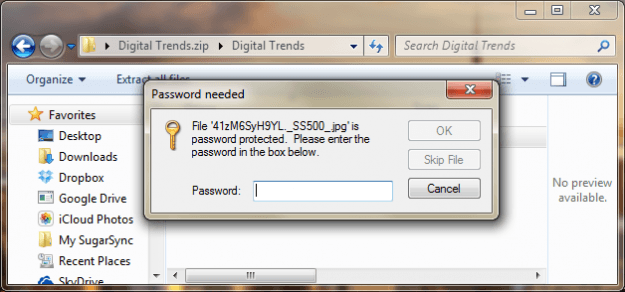 Password Protected Windows