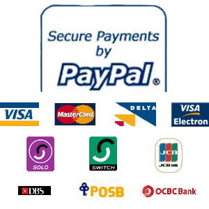 how to set up a bisnus paypal