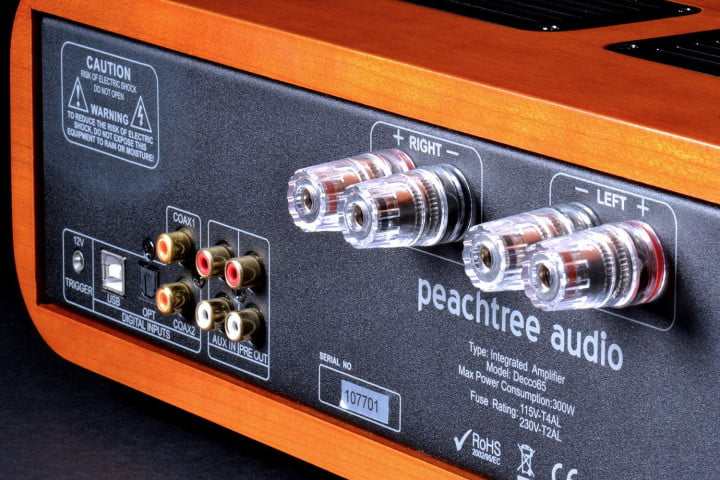 peachtree audio decco  review amplifier back jacks angle