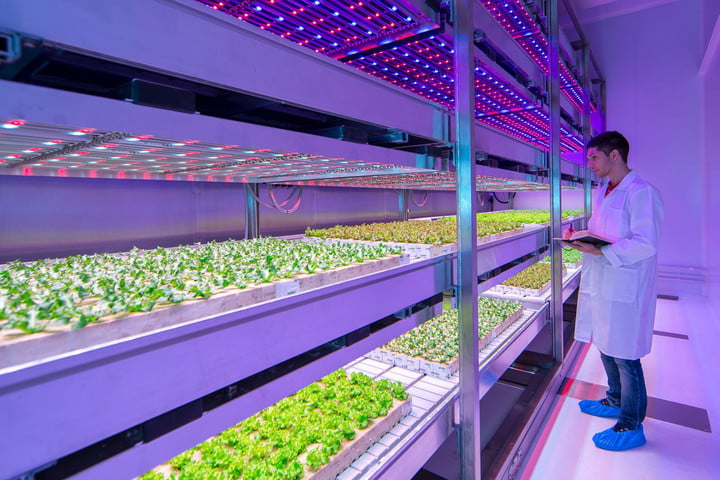 future of food introduction philips growwise