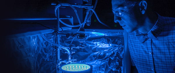 A new way to fake photosynthesis could help put CO2 back where it belongs