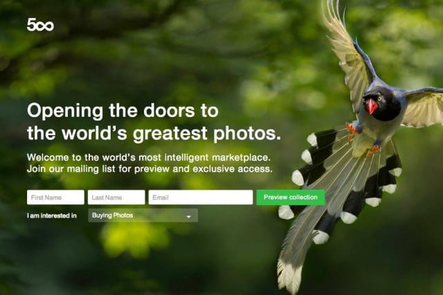 online photo community  px launches prime commercial licensing service
