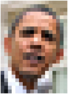 Despite the low-res pixelated quality of this image, most of us can identify this person.