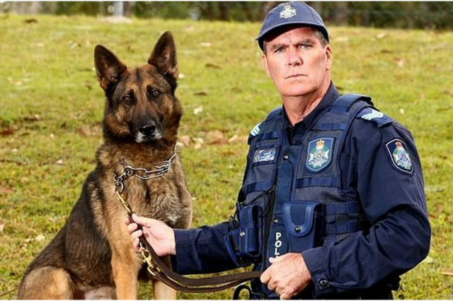 man who shot police officer was tracked using the find my iphone app sargent gary hamrey and dog biff