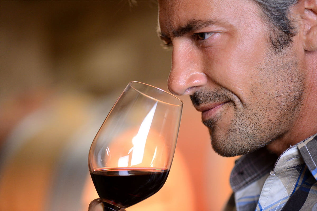 predicting smell machine learning scent wine