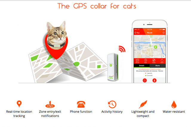 need to talk your cat you may weenects mobile phone for felines screen shot  at pm