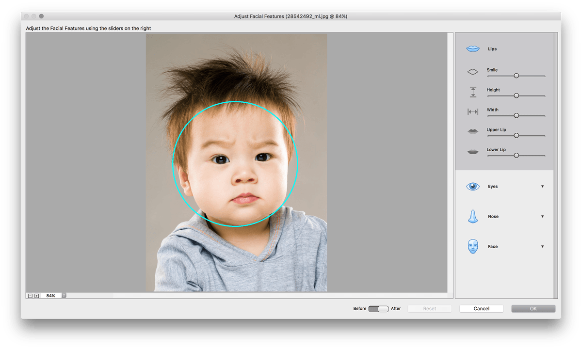 adobe photoshop elements  premiere released screen shot at am