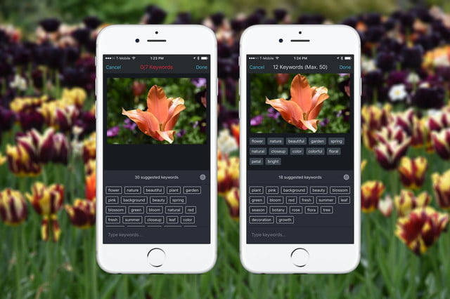 shutterstock app keywords tag ai artificial intelligence image recognition