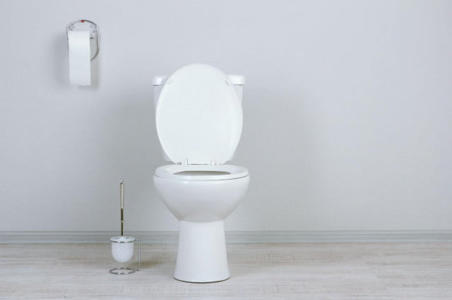 how to unclog a toilet shutterstock