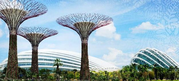 Singapore Supertrees 2