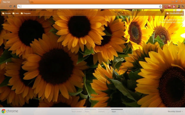 Sunflowers Theme