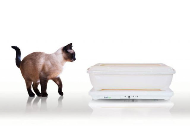tailio turns cats litter box health monitor sees can predict earthquakes smart