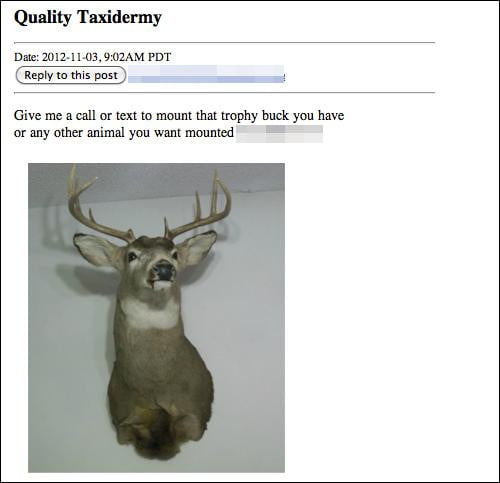 taxidermy1