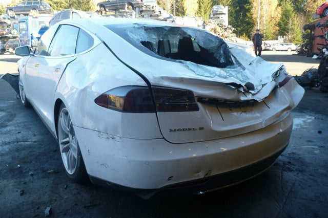 Tesla Model S crushed by a tree - rearview