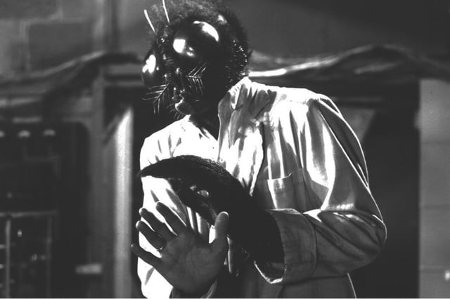 the fly remake