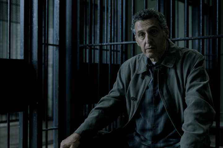 the night of john turturro imago