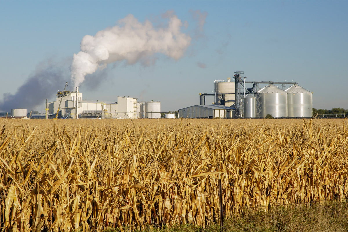 the truth about ethanol in your gas plant