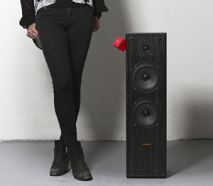 the vamp floorstanding speaker