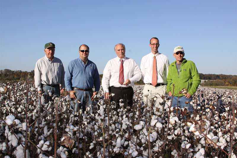 carolina cotton supply chain for ts designs