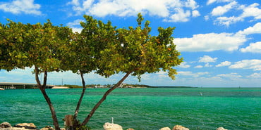 best of key west