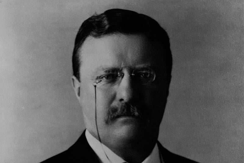 beard grooming tips presidents day president theodore roosevelt  1904