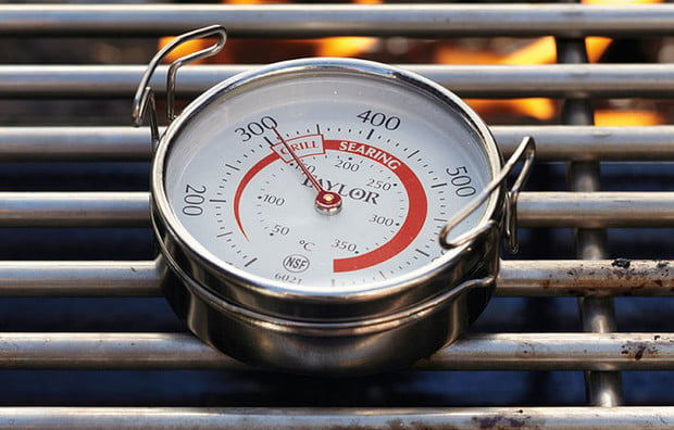 Taylor Grill Surface Thermometer ()