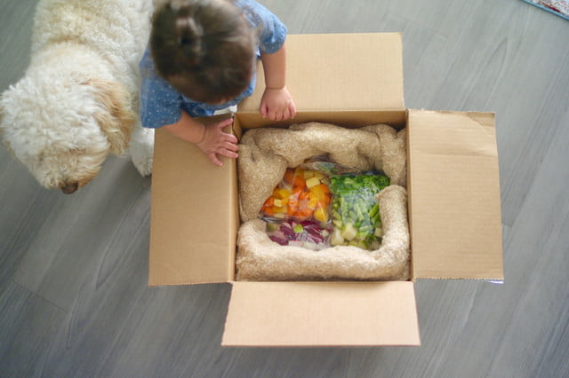 thistle baby meal kit