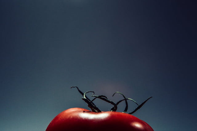 foods you should not put in the refrigerator tomato header