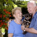 Older man and woman holding small dog.