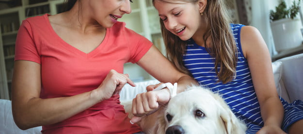 a mother and daughter sit on the couch with the family dog while they check the mom's smart watch
