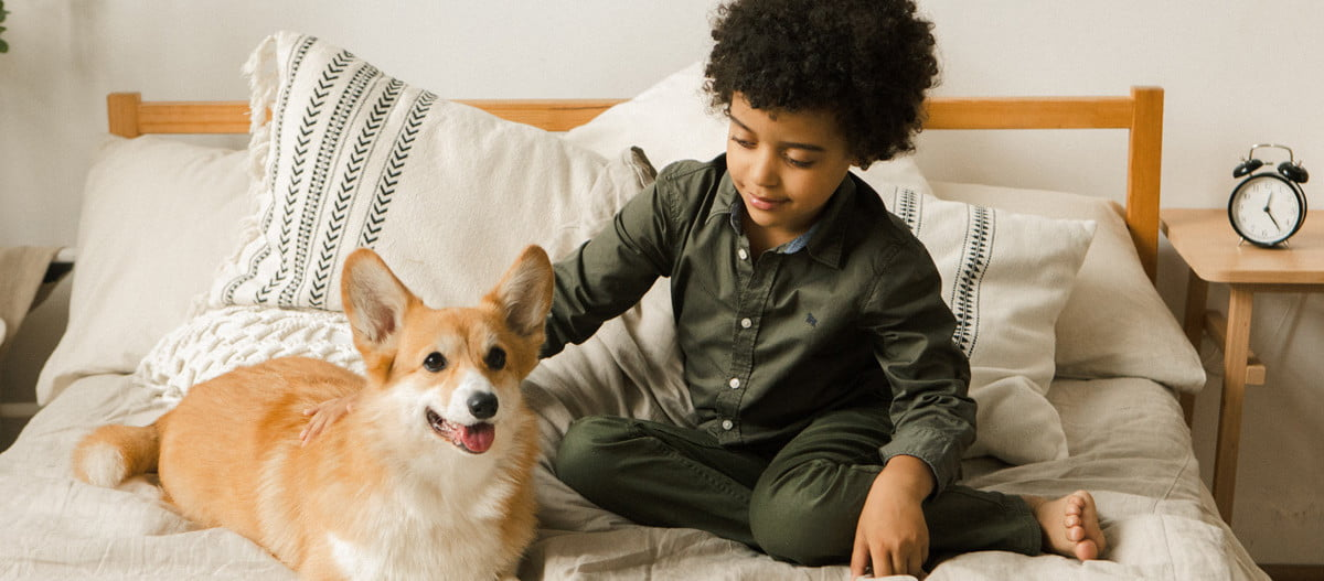 young boy petting dog on bed