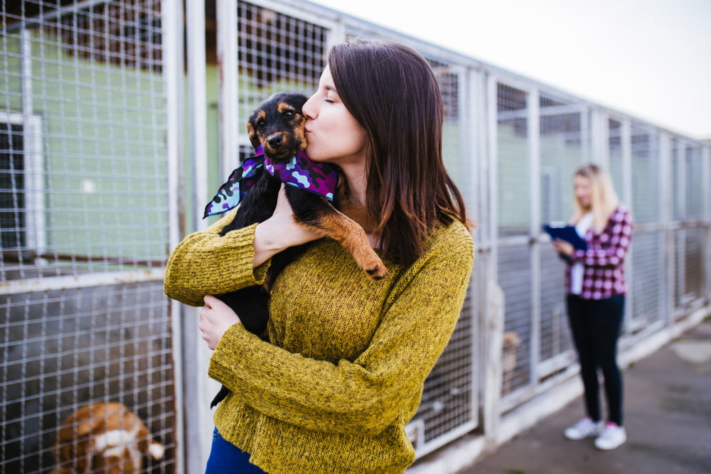 A woman in a yellow sweater holding a puppy in a shelter.