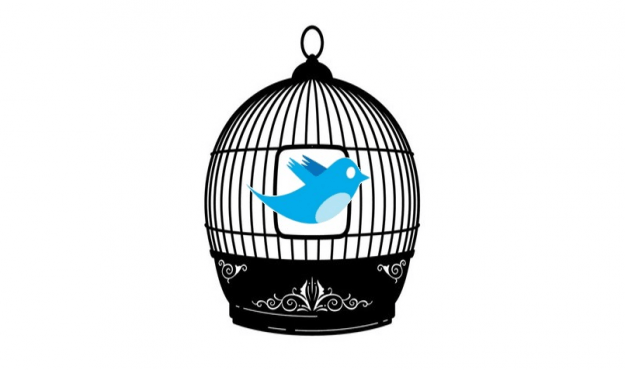 twitter cage