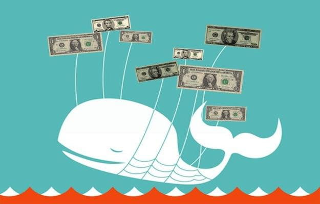 twitter whale money