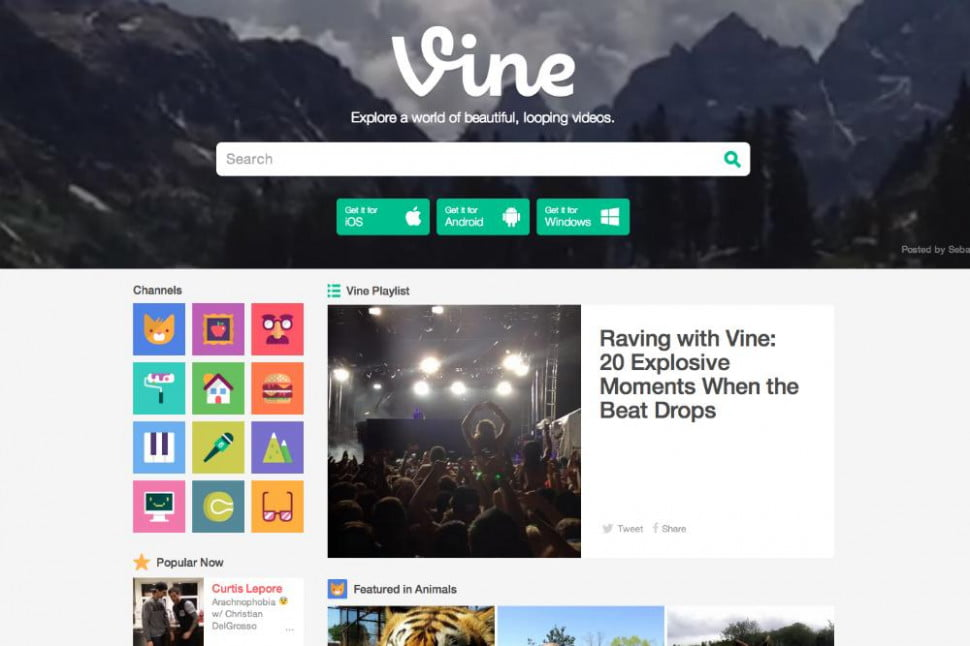 vine for web