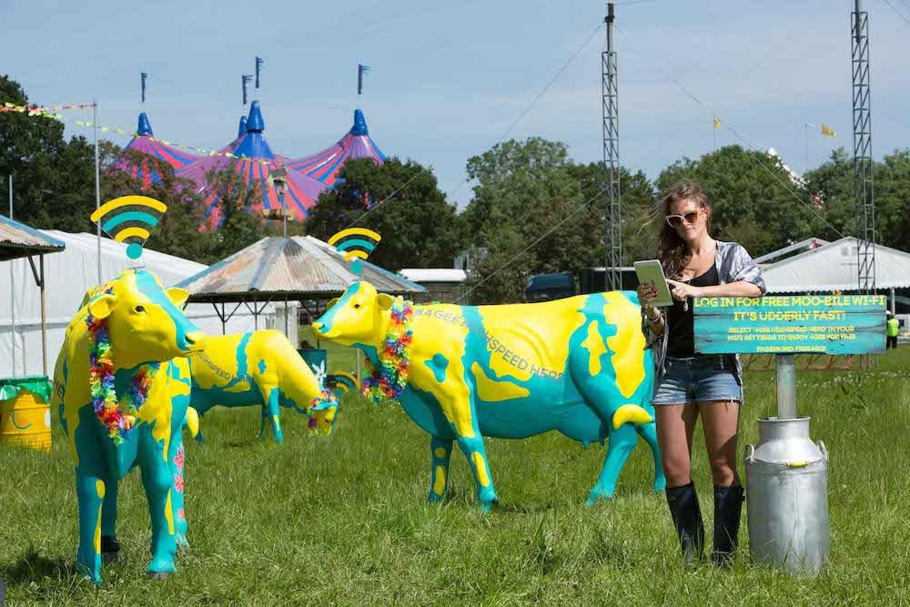 wi fi cows to help revelers get online at uks most famous music festival glastonbury