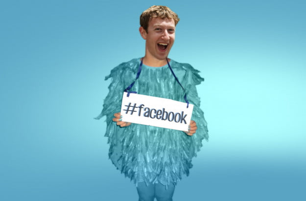 zuckerbird header
