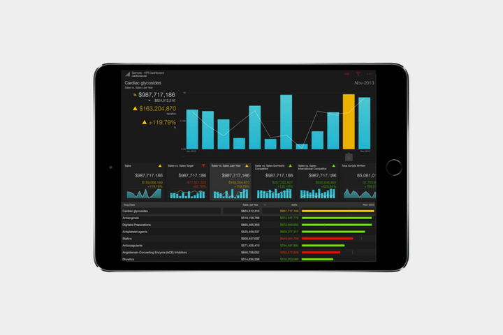 best-ipad-apps-roambi-analytics